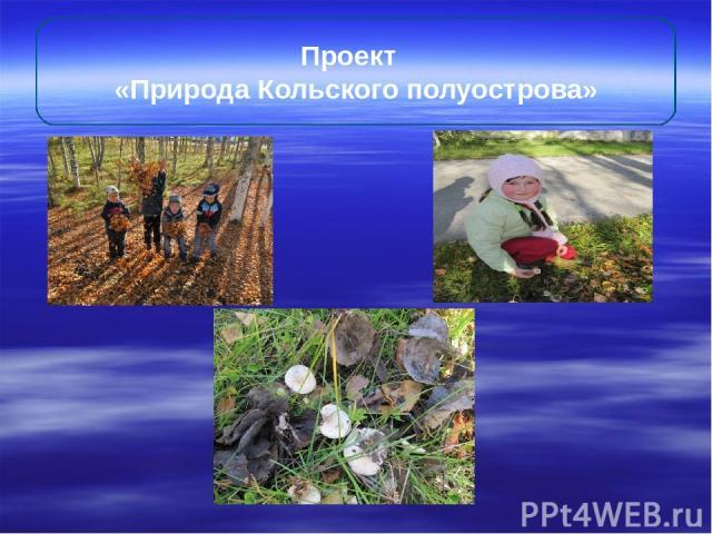 Проект «Природа Кольского полуострова»