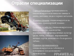 Отрасли специализации Горнодобывающая промышленность специализируется на выпуске