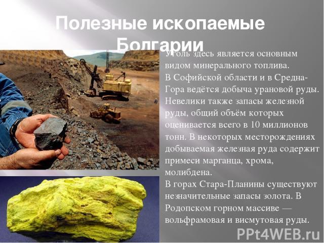 Полезные ископаемые Болгарии Уголь здесь является основным видом минерального топлива. В Софийской области и в Средна-Гора ведётся добыча урановой руды. Невелики также запасы железной руды, общий объём которых оценивается всего в 10 миллионов тонн.…