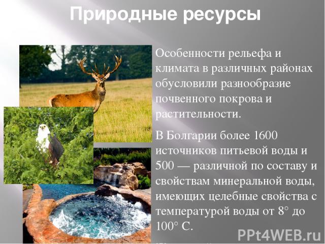 Природные ресурсы Особенности рельефа и климата в различных районах обусловили разнообразие почвенного покрова и растительности. В Болгарии более 1600 источников питьевой воды и 500 — различной по составу и свойствам минеральной воды, имеющих целебн…