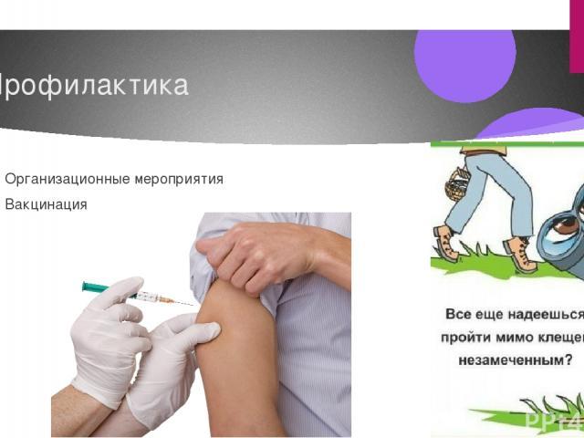 Профилактика Организационные мероприятия Вакцинация