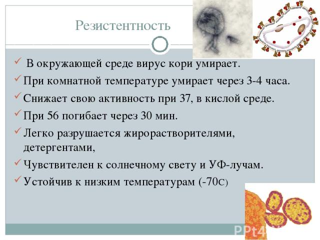 Резистентность В окружающей среде вирус кори умирает. При комнатной температуре умирает через 3-4 часа. Снижает свою активность при 37, в кислой среде. При 56 погибает через 30 мин. Легко разрушается жирорастворителями, детергентами, Чувствителен к …