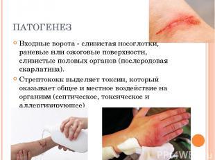 ПАТОГЕНЕЗ Входные ворота - слизистая носоглотки, раневые или ожоговые поверхност