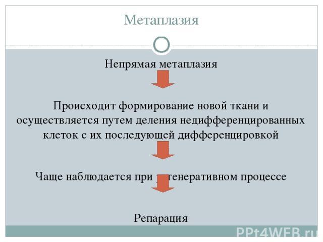 Метаплазия Непрямая метаплазия Происходит формирование новой ткани и осуществляется путем деления недифференцированных клеток с их последующей дифференцировкой Чаще наблюдается при регенеративном процессе Репарация