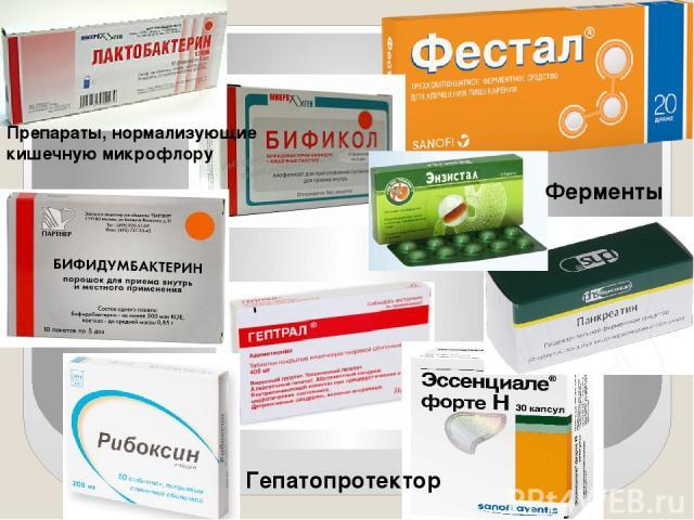 Препараты, нормализующие кишечную микрофлору Ферменты Гепатопротектор