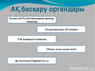 АҚ басқару органдары Қазақстан Республикасының пример-министрі Республикалық АҚ