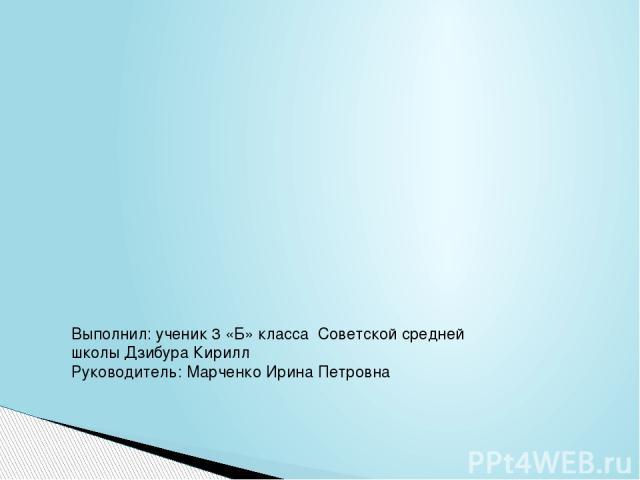 Выполнил: ученик 3 «Б» класса Советской средней школы Дзибура Кирилл Руководитель: Марченко Ирина Петровна