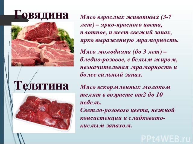 Говядина Мясо взрослых животных (3-7 лет) – ярко-красного цвета, плотное, имеет свежий запах, ярко выраженную мраморность. Мясо молодняка (до 3 лет) – бледно-розовое, с белым жиром, незначительная мраморность и более сильный запах. Телятина Мясо вск…