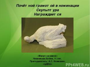 Почётной грамотой в номинации Скульптура Награждается «Манул на камне» Нижникова