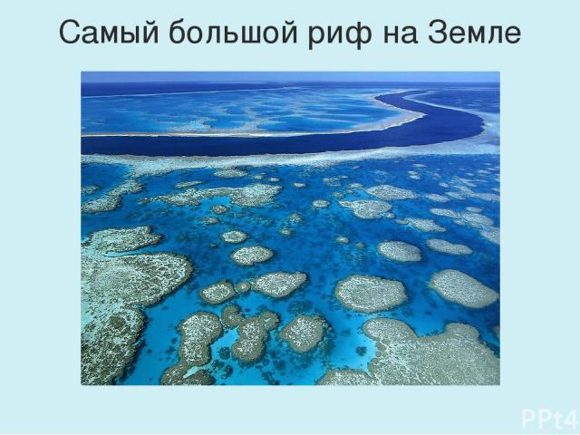 Самый большой риф на Земле