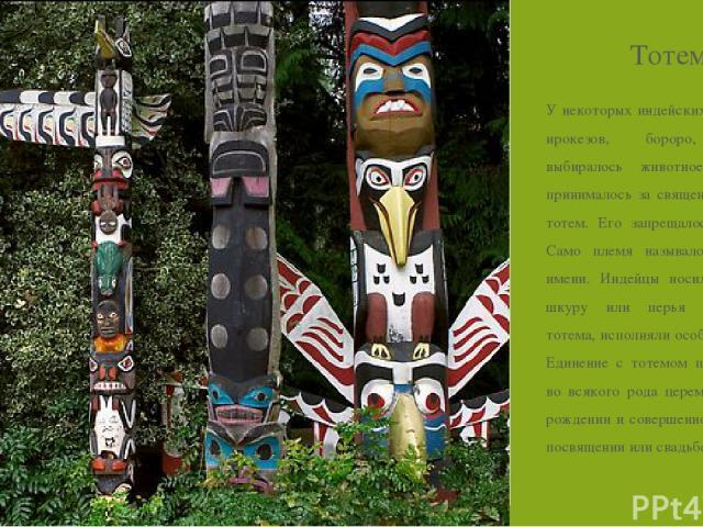 Тотем У некоторых индейских племен — ирокезов, бороро, чероки выбиралось животное, которое принималось за священное, т.е. за тотем. Его запрещалось убивать. Само племя называлось по его имени. Индейцы носили на себе шкуру или перья животного-тотема,…