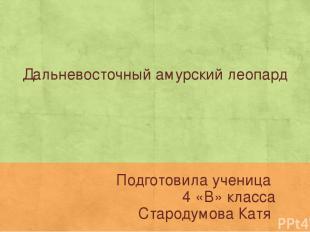 Дальневосточный амурский леопард Подготовила ученица 4 «В» класса Стародумова Ка