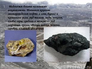 Полезные ископаемые Индонезия богата полезными ископаемыми. Имеются крупные мест