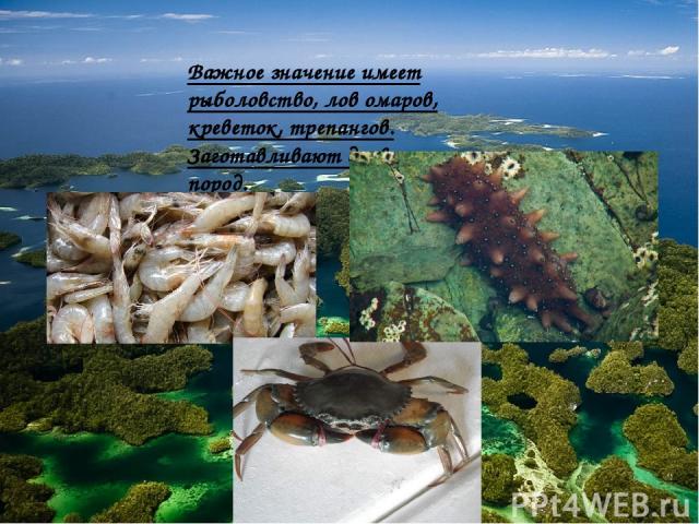 Важное значение имеет рыболовство, лов омаров, креветок, трепангов. Заготавливают древесину ценных пород.