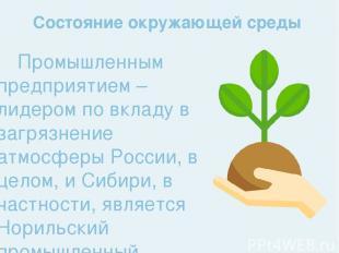 Промышленным предприятием – лидером по вкладу в загрязнение атмосферы России, в