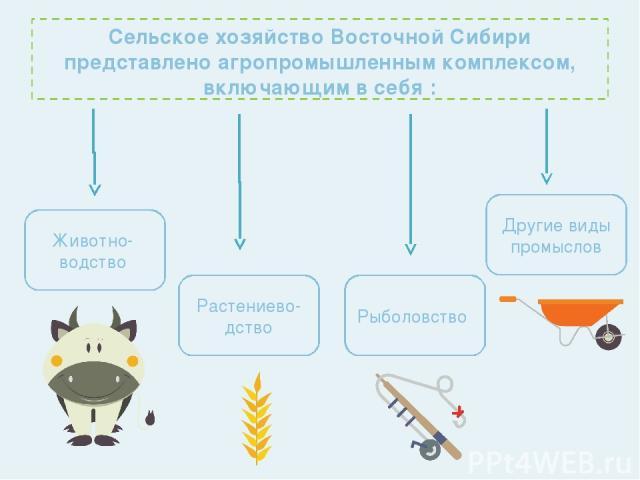 Сельское хозяйство Восточной Сибири представлено агропромышленным комплексом, включающим в себя : Животно- водство Растениево-дство Рыболовство Другие виды промыслов