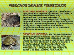 ПРЕСНОВОДНЫЕ ЧЕРЕПАХИ БОЛОТНЫЕ ЧЕРЕПАХИ, группа из семейства пресноводных черепа