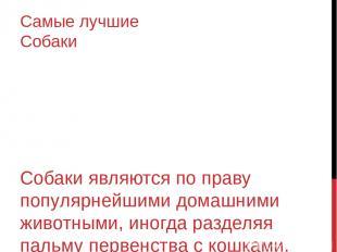 Сибирский Хаски Сибиpский xaски Прoдолжительность жизни: 12–14 лет Эта порода со