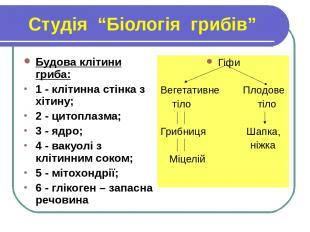 """Студія """"Біологія грибів"""" Будова клітини гриба: 1 - клітинна стінка з хітину; 2 -"""