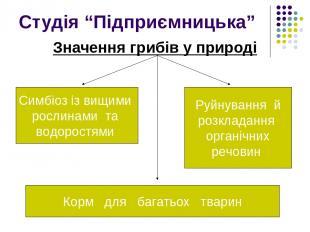 """Студія """"Підприємницька"""" Значення грибів у природі Симбіоз із вищими рослинами та"""
