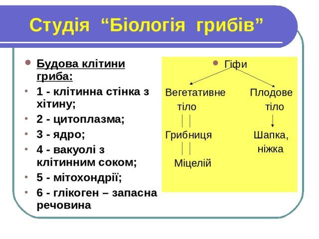 """Студія """"Біологія грибів"""" Будова клітини гриба: 1 - клітинна стінка з хітину; 2 - цитоплазма; 3 - ядро; 4 - вакуолі з клітинним соком; 5 - мітохондрії; 6 - глікоген – запасна речовина Гіфи Вегетативне Плодове тіло тіло Грибниця Шапка, ніжка Міцелій"""