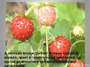 А сколько ягод и грибов! Словно красный коралл, зреет в траве сочная земляника;