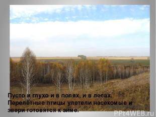 Пусто и глухо и в полях, и в лесах. Перелётные птицы улетели насекомые и звери г