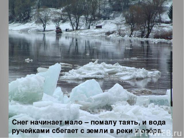 Снег начинает мало – помалу таять, и вода ручейками сбегает с земли в реки и озёра.