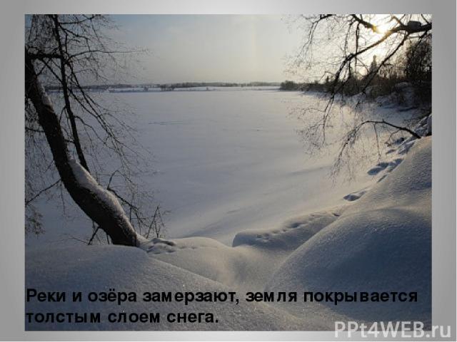 Реки и озёра замерзают, земля покрывается толстым слоем снега.