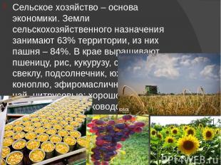 Сельское хозяйство – основа экономики. Земли сельскохозяйственного назначения за
