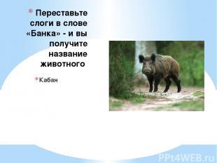 Переставьте слоги в слове «Банка» - и вы получите название животного Кабан