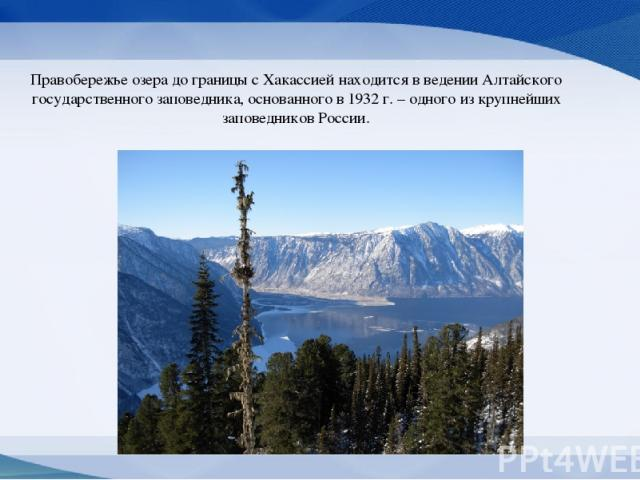 Правобережье озера до границы с Хакассией находится в ведении Алтайского государственного заповедника, основанного в 1932 г. – одного из крупнейших заповедников России.