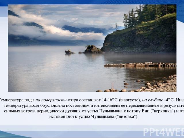 Температура воды на поверхности озера составляет 14-16º C (в августе), на глубине -4º C. Низкая температура воды обусловлена постоянным и интенсивным ее перемешиванием в результате сильных ветров, периодически дующих от устья Чулышмана к истоку Бии …