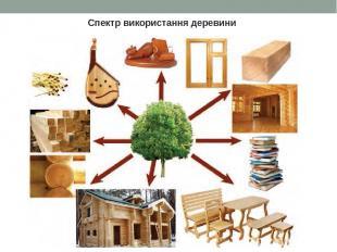 Спектр використання деревини