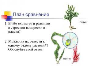 План сравнения 1. В чём сходство и различие в строении водоросли и плауна? 2. Мо