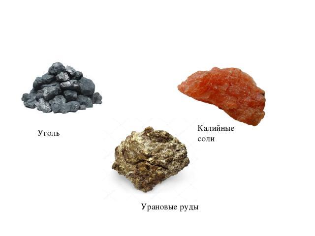 Уголь Калийные соли Урановые руды