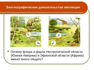 Биогеографические доказательства эволюции Почему флора и фауна Неотропической об