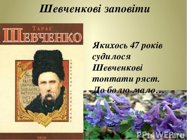 Якихось 47 років судилося Шевченкові топтати ряст. До болю мало… Шевченкові заповіти