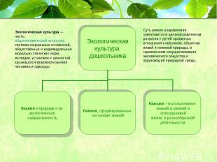 Экологическая культура— частьобщечеловеческой культуры, система социальных отн