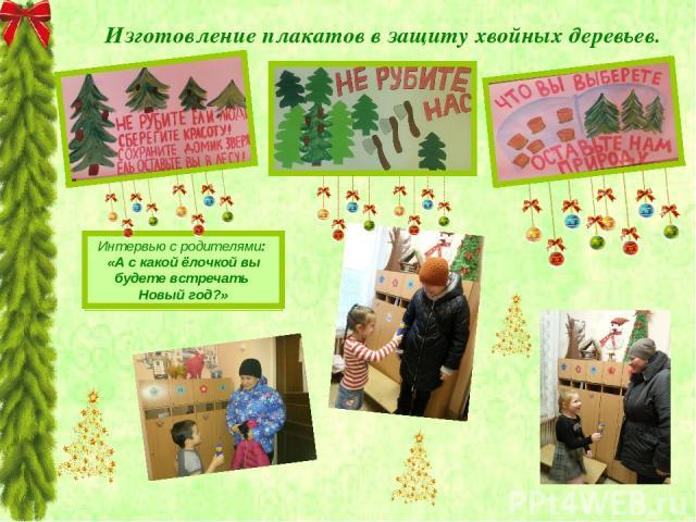 Изготовление плакатов в защиту хвойных деревьев. Интервью с родителями: «А с какой ёлочкой вы будете встречать Новый год?»