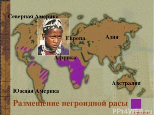 Размещение негроидной расы Северная Америка Южная Америка Азия Европа Африка Авс