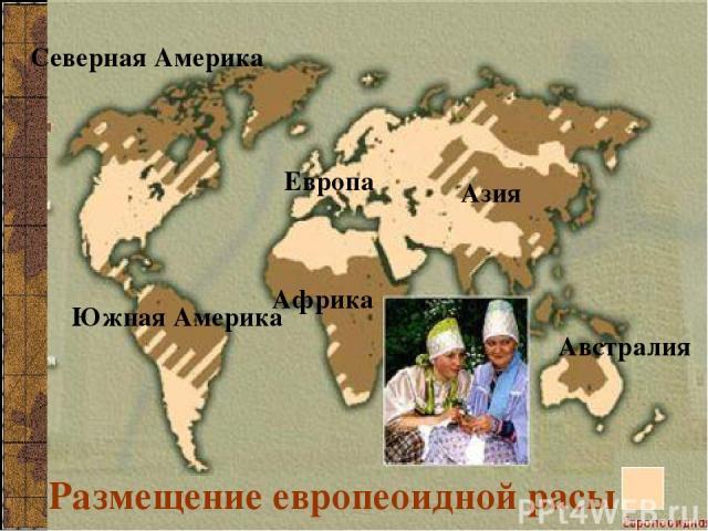 Размещение европеоидной расы Европа Азия Северная Америка Южная Америка Африка Австралия