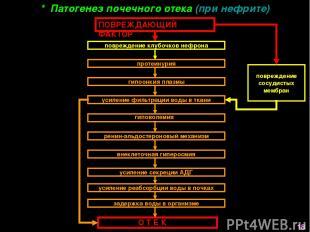 повреждение сосудистых мембран * Патогенез почечного отека (при нефрите) О Т Е К