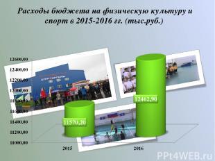Расходы бюджета на физическую культуру и спорт в 2015-2016 гг. (тыс.руб.)