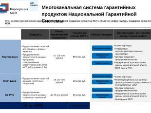 Многоканальная система гарантийных продуктов Национальной Гарантийной Системы Ба
