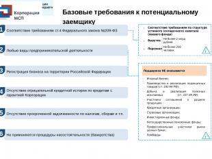 Базовые требования к потенциальному заемщику Соответствие требованиям по структу