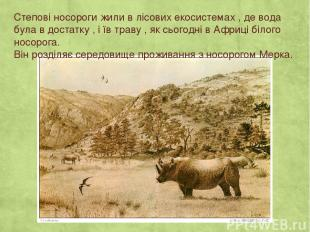 Степові носороги жили в лісових екосистемах , де вода була в достатку , і їв тра