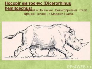 Носоріг емітоєчус (Dicerorhinus hemitoechus) Він був знайдений в Німеччині , Вел