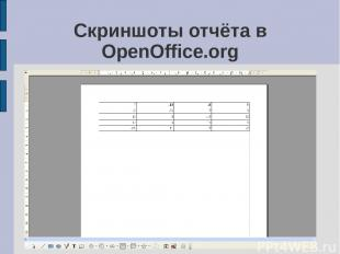 Скриншоты отчёта в OpenOffice.org
