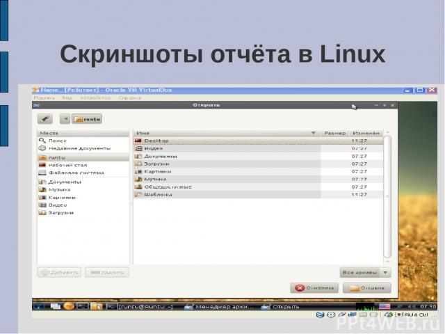 Скриншоты отчёта в Linux